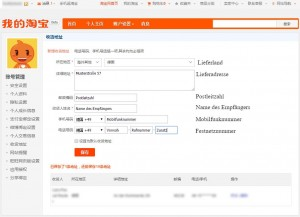 Taobao Guide Deutsch