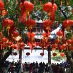 Frohes Neues aus Dongguan! Ein Rückblick auf das Frühlingsfest
