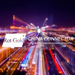 Business-Workshop: China-Networking und Matchmaking