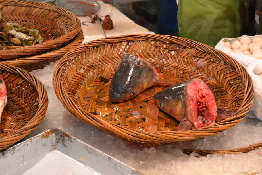 Fischköpfe essen China