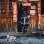 Kann man in China Hunde essen?